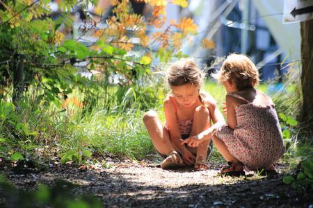 Spelende kinderen op het park.