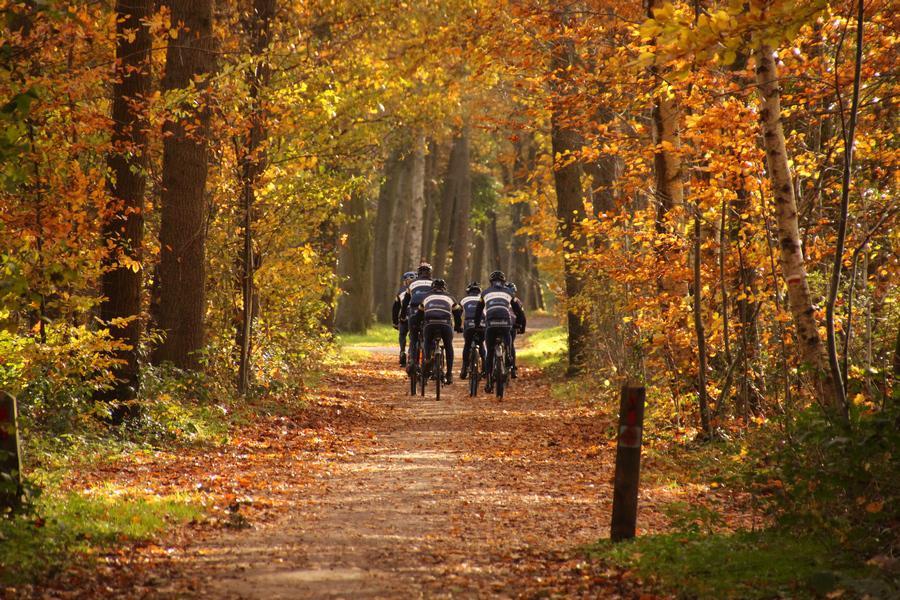 mountainbike tocht achterhoek